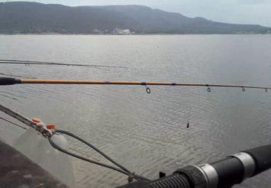 Flexibilización: autorizaron la pesca deportiva y el fútbol 5